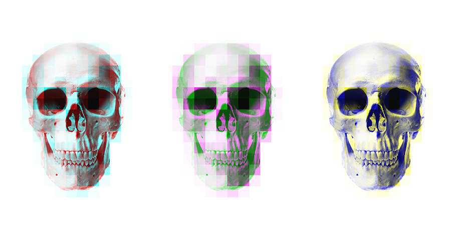 these three skulls have had a mosaic filter applied to one of their channels