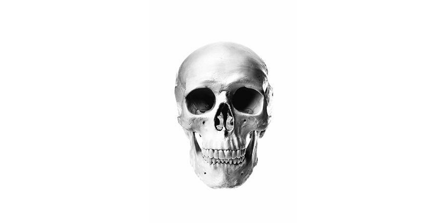 this is the original skull image, converted to Grayscale and then back to RGB in Photoshop
